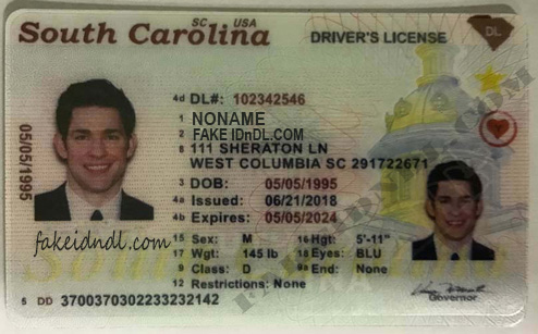 south carolina driving license requirements