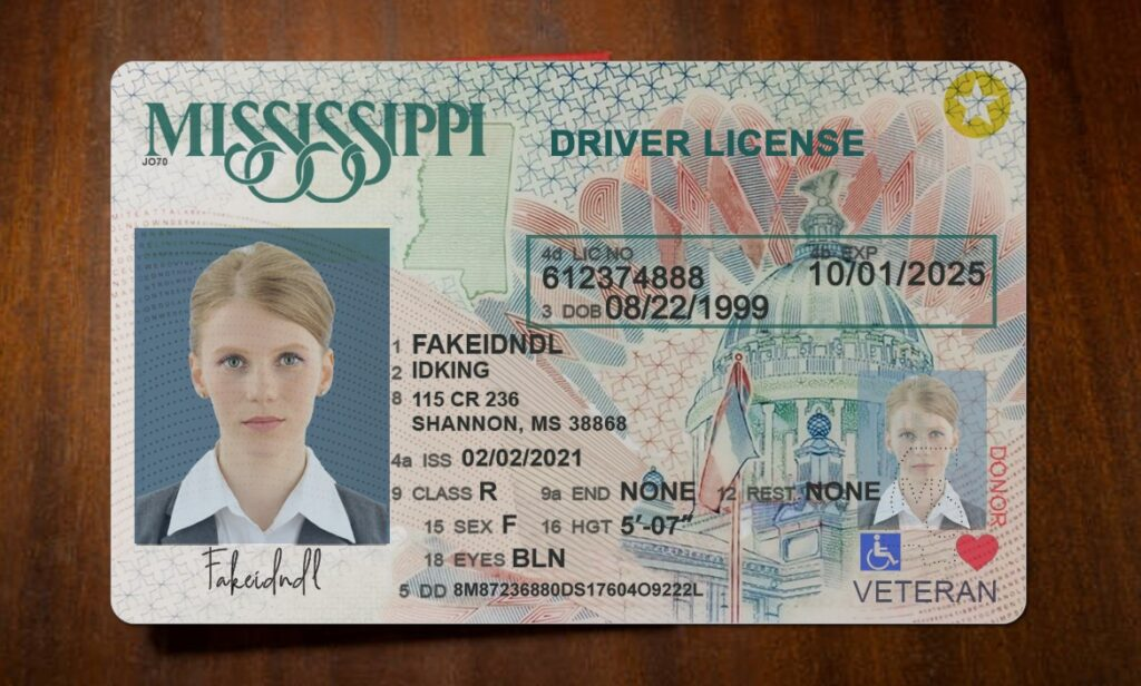 Fake driver's license front and back