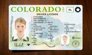 Find out the fake identification card